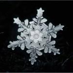 «Из чего снежинка кружевная?» Леонид Юдников